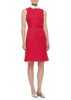 Kimberly Belted Collar Dress   Kimberly Belted Collar Dress