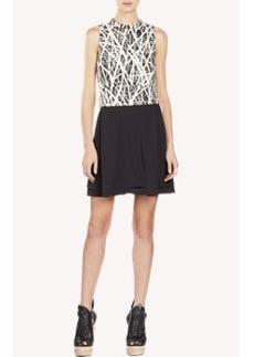 Proenza Schouler Twig-Print Dress