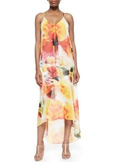 Vandy Printed Maxi Dress   Vandy Printed Maxi Dress
