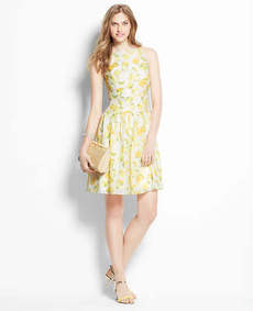 Petite Lemon Drop Sundress