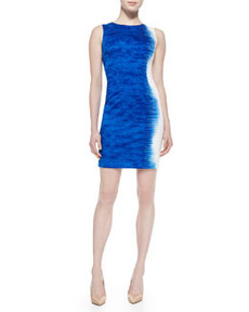 Emory Palisades Sleeveless Sheath Dress   Emory Palisades Sleeveless Sheath Dress