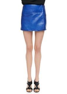Diane von Furstenberg Liam Leather Zip Skirt