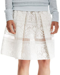 Pleated Lace Sheer-Stripe Skirt   Pleated Lace Sheer-Stripe Skirt