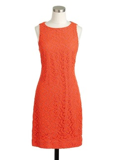 Collection neon lace shift Dress