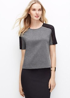 Paneled Lace Sleeve Top