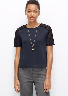Petite Paneled Lace Sleeve Top
