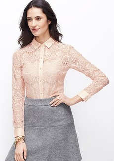 Petite Winter Lace Top