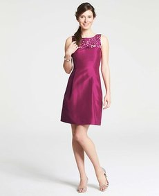 Petite Silk Dupioni Passamenterie Lace Dress