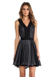 Robert Rodriguez Zebra Stripe Lace Dress in Black