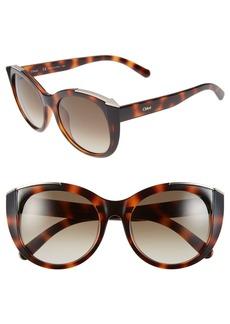 Chloé 'Dalia' 55mm Cat Eye Sunglasses