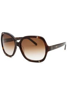 Chloe Women's Square Tortoise Frame Light Brown Gradient Sunglasses