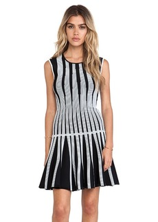 Diane von Furstenberg Celine Tank Dress in Black & White