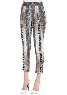 Diane von Furstenberg Atlas Printed Pants
