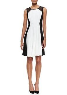 Pattie Sleeveless Flared Colorblocked Dress   Pattie Sleeveless Flared Colorblocked Dress