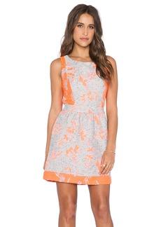 Ella Moss Dahlia Dress
