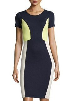 French Connection Colorblock Short-Sleeve Dress
