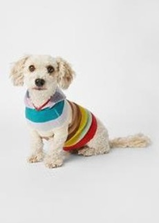 Holiday stripe dog sweater