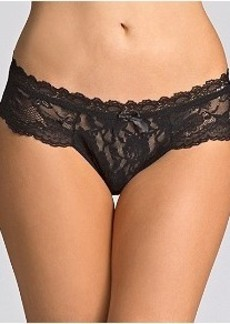 Hanky Panky Swan Lace Hipster