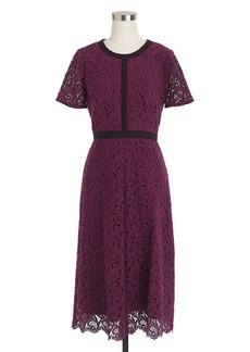Collection grosgrain lace dress