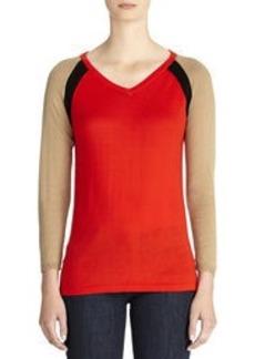 Color Block V-Neck Sweater (Petite)