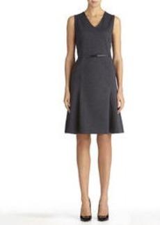 Sleeveless Fit and Flare V-Neck Dress