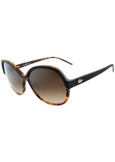Lacoste LA 626 210 Sunglasses