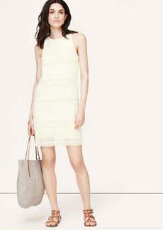 Petite Lace Stripe Shift Dress