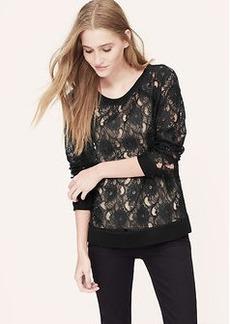Petite Sheer Lace Sweatshirt