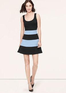 Tall Striped Flare Dress