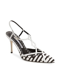 Manolo Blahnik 'Clitus' Pointy Toe Pump (Women)