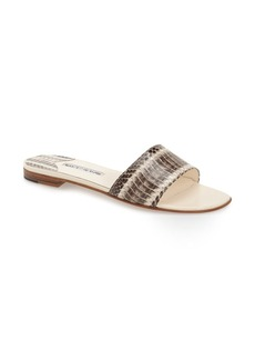 Manolo Blahnik 'Falcoplain' Genuine Snakeskin Slide Sandal (Women)