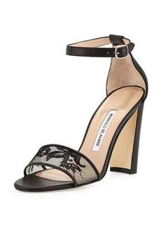 Manolo Blahnik Lauratop Lace Chunky-Heel Sandal, Black