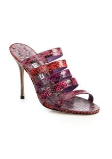 Manolo Blahnik Sifi Snakeskin Mule Sandals