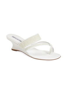 Manolo Blahnik 'Susa' Wedge Sandal (Women)