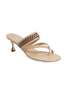 Manolo Blahnik 'Susasti' Slide Sandal (Women)