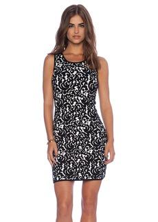MILLY Lace Jacquard Dress