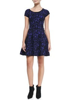Milly Velvet-Lace A-Line Dress