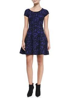 Milly Velvet-Lace A-Line Dress