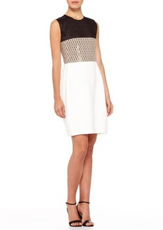 Narciso Rodriguez Colorblock Net-Top Dress