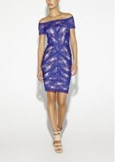Cam Stretch Lace Dress