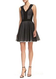 Robert Rodriguez Lace Zebra-Stripe Sleeveless Fit-and-Flare Dress