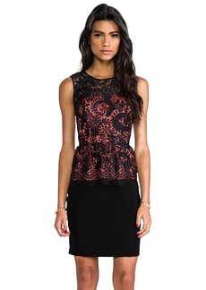 Shoshanna Lace Combo Celeste Dress