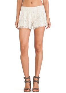 T-Bags LosAngeles Lace Shorts