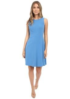 Tahari by ASL Sleeveless Seamed Bodice A-Line Dress