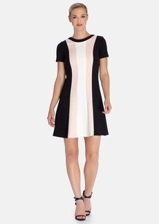 Tahari Stripe Woven Fit & Flare Dress