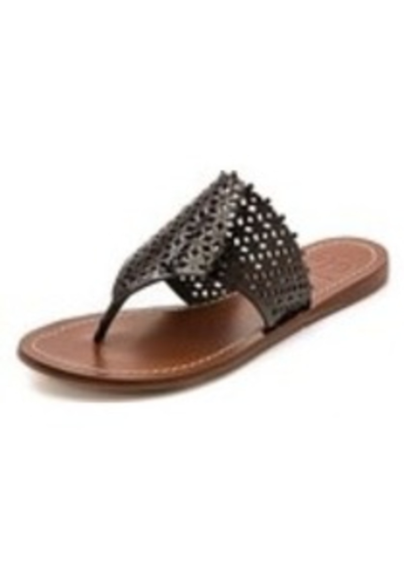 tory burch tory burch daisy perforated flat thong sandals shoes shop it to me. Black Bedroom Furniture Sets. Home Design Ideas