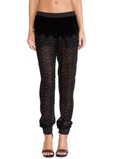 Twelfth Street By Cynthia Vincent Jogger Pants