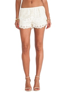 Twelfth Street By Cynthia Vincent Lace Shorts