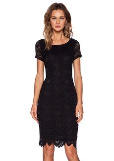 Velvet by Graham & Spencer Kiara Lace Zoya Dress
