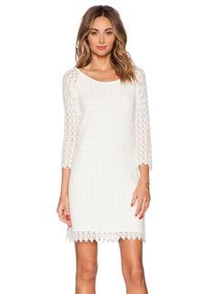 Velvet by Graham & Spencer Spring Lace Noelle Dress
